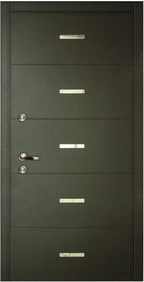 dveri-v-kvartiru-5+